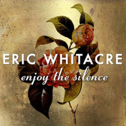 Design and create the official video for Enjoy the Silence